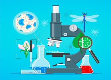 Курс Биология (11 класс)